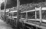 Piles of shoes in a Majdanek barrack. Photograph taken after the liberation of the camp in July 1944. (IPN)