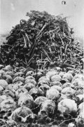Skulls and bones of victims of the concentration camp at Majdanek unearthed during exhumation in the autumn of 1944. (IPN)