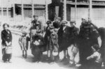 Hungarian Jews in KL Auschwitz on their way to the gas chambers (IPN).